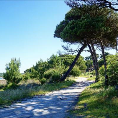 Maison de villégiature au Portugal
